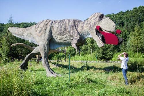 baltow_dinozaury_inspekcje