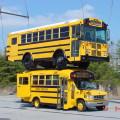 autobus szkolny - schoolbus USA, test